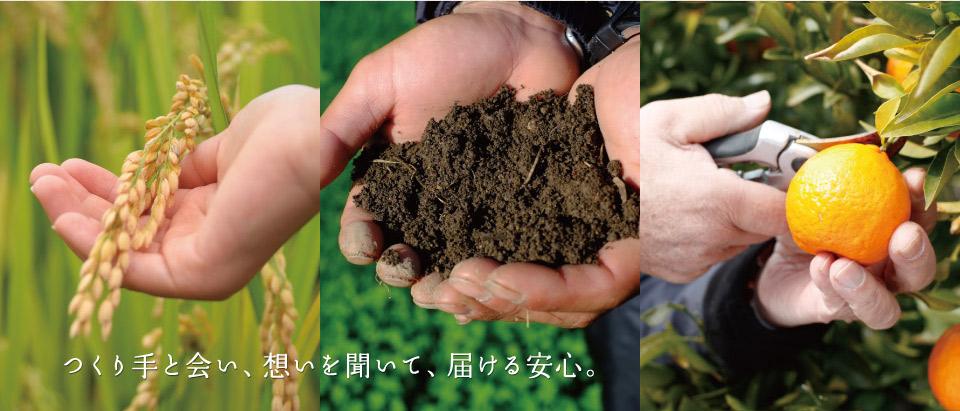 つくり手会い、想いを聞いて、届ける農薬。広島・竹原 株式会社キムラ